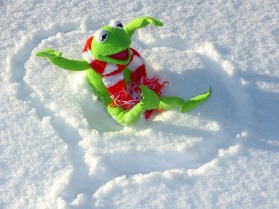 Olo kuin sammakolla lumessa